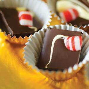 Carolyn Faye Fox&#96;s Double Chocolate Peppermint Bark