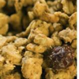 Granola Bites